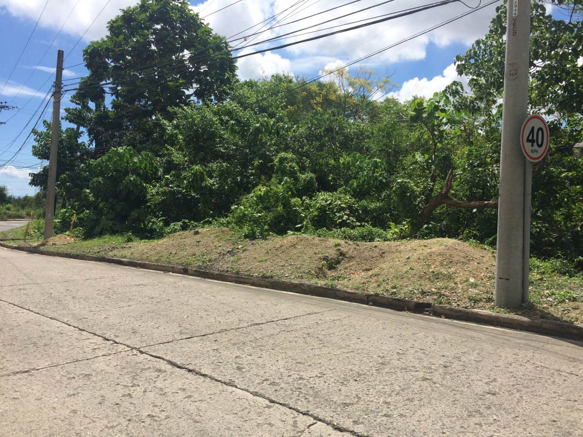 Maria Luisa Estate Park - Lot For Sale - Phase 5 -