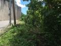Maria-Luisa-Estate-Park-779sqm-Lot-For-Sale-Phase-5-Cebu (1)
