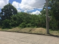Maria-Luisa-Estate-Park-779sqm-Lot-For-Sale-Phase-5-Cebu (3)