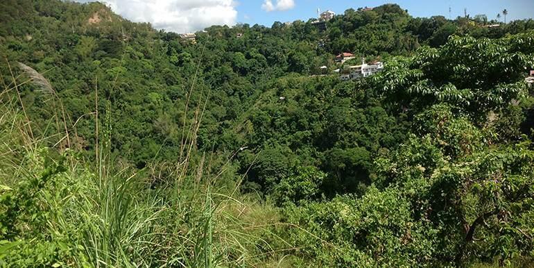 overlooking-lot-for-sale-at-vista-grande-pardo-cebu-city (32)