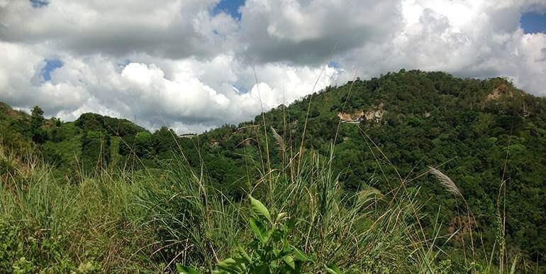 overlooking-lot-for-sale-at-vista-grande-pardo-cebu-city (33)