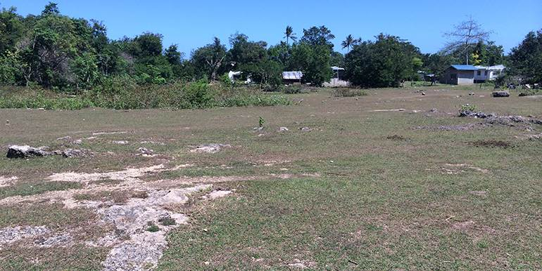 5000sqm-residential-lot-for-sale-maribago-lapu-lapu-city-mactan-cebu (1)