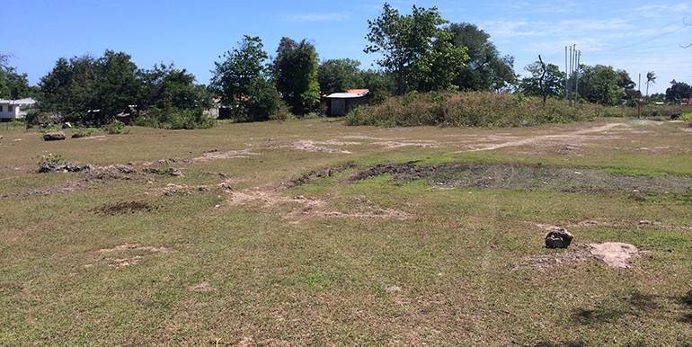 5000sqm-residential-lot-for-sale-maribago-lapu-lapu-city-mactan-cebu (2)