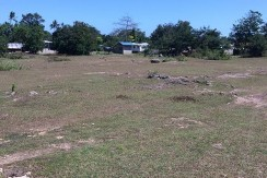 5000sqm-residential-lot-for-sale-maribago-lapu-lapu-city-mactan-cebu (3)