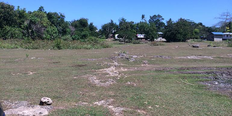 5000sqm-residential-lot-for-sale-maribago-lapu-lapu-city-mactan-cebu (4)