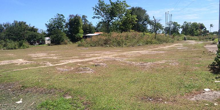 5000sqm-residential-lot-for-sale-maribago-lapu-lapu-city-mactan-cebu (5)