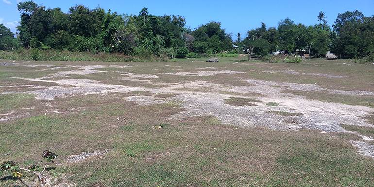 5000sqm-residential-lot-for-sale-maribago-lapu-lapu-city-mactan-cebu (8)