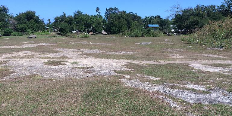 5000sqm-residential-lot-for-sale-maribago-lapu-lapu-city-mactan-cebu (9)