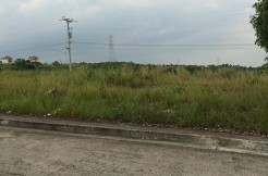 vista-grande-lot-for-sale-bulacao-talisay-city-cebu-lot46 (13)