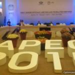APEC Ministers Approve, Adopt: Cebu Declaration