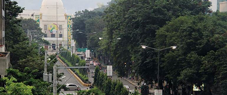 Can Cebu City Grow Green