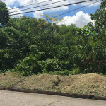 Maria-Luisa-Estate-Park-779sqm-Lot-For-Sale-Phase-5-Cebu